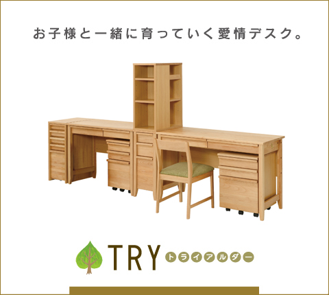 TRY(トライアルダー)