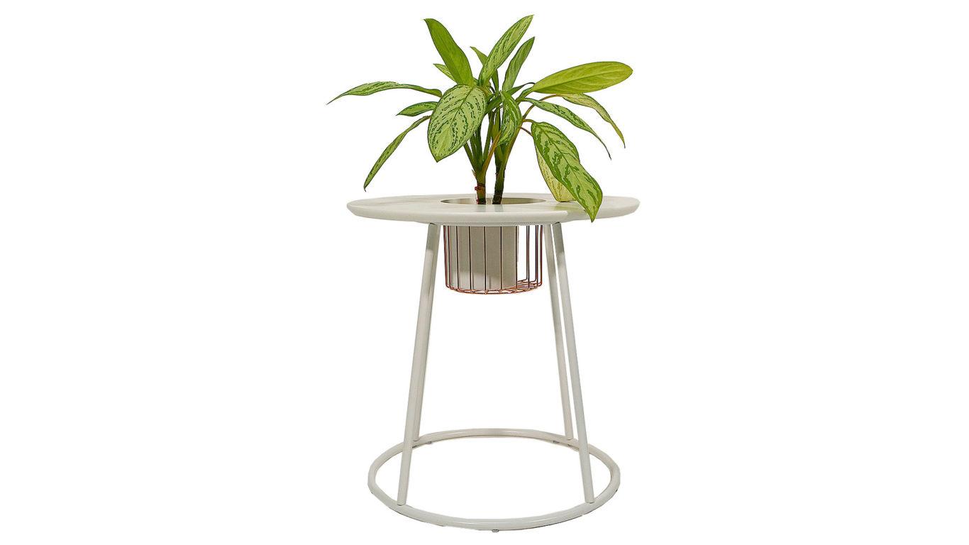 丸いテーブルに観葉植物を置いた写真