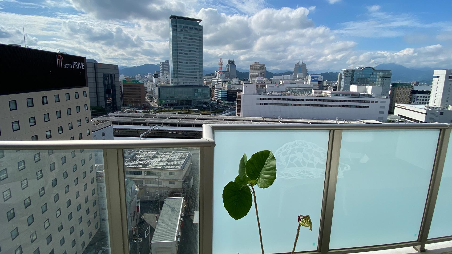 静岡県駿河区のマンションから見る観葉植物と静岡市街の画像
