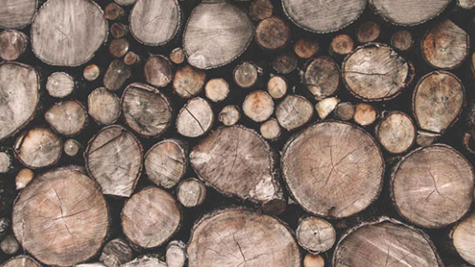 ノンコイルマットレスのフレームの木材の画像