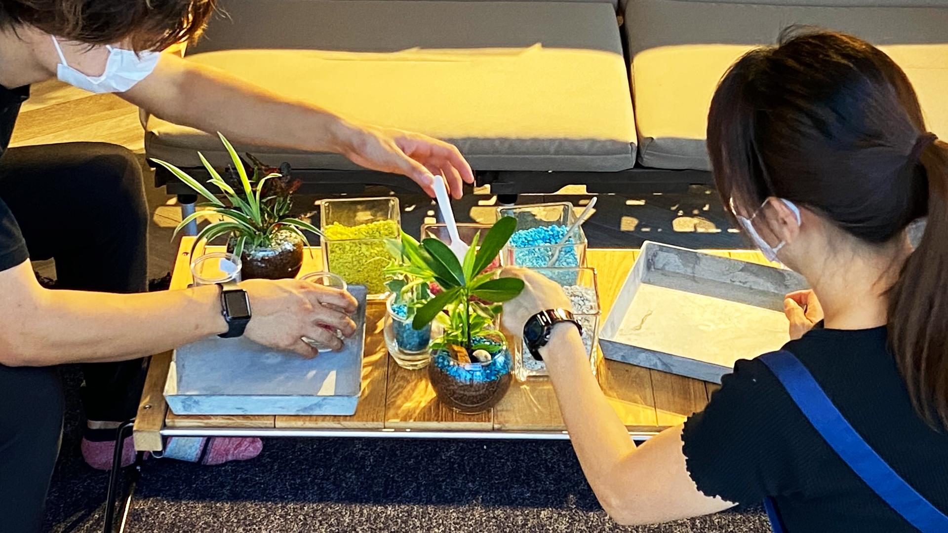 キャンピングオフィスで植物のワークショップをしている様子。ソファでくつろぎながら楽しくワークショップ。